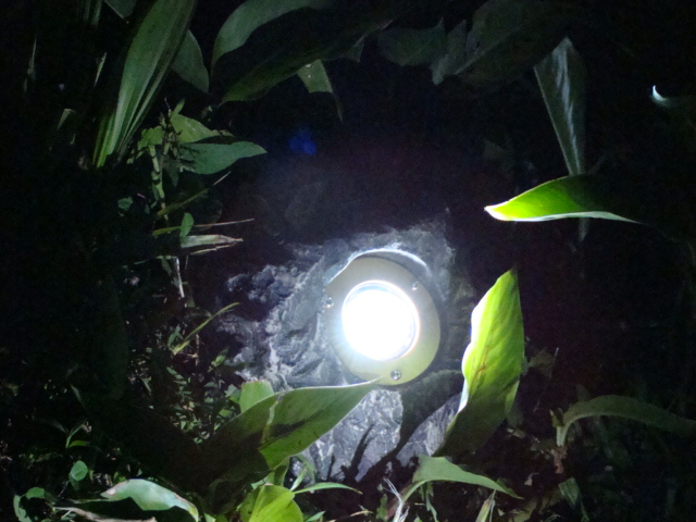 Solar Rock Spot Light (SC419)