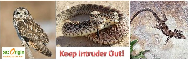 Keep Intruder Out!