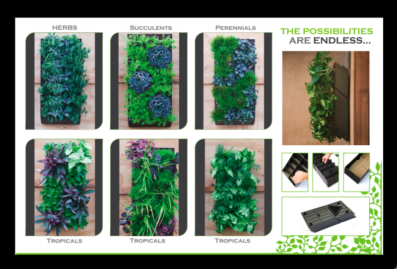 Vertical Garden Panel http://www.scorigin.com/vertical_garden/living_wall_panel